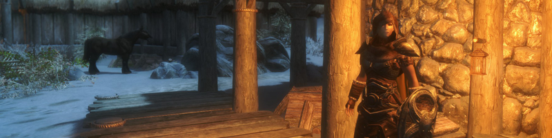 Skyrim - Lydia in Winterhold